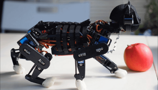 Projeto gato biônico